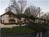 Damaged Tree on Junction of Lymington Road and Minster Road